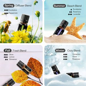 ANJOU Essential Oils Set (18 x 5mL Oils)